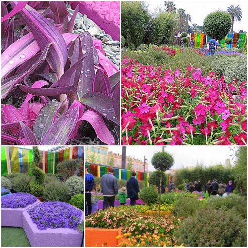Festival des jardins, jardin albert 1er Nice, coulée verte, jardiniers paysagistes,