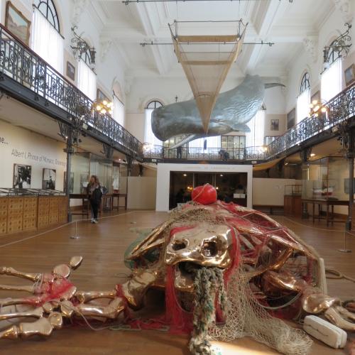 Expo Borderline, Philippe Pasqua, Musée océanographique de Monaco