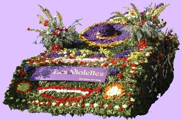 char_violettes.jpg
