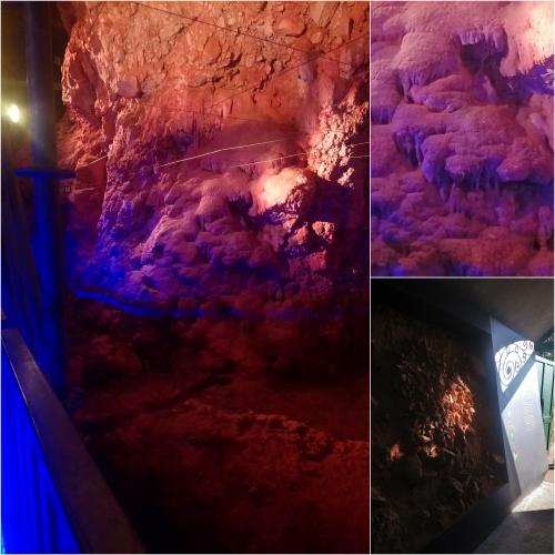 La grotte du Lazaret, Nice, Terra Amata, Port de Nice