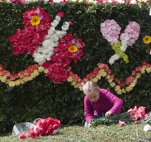 kreado, vence, bataille de fleurs