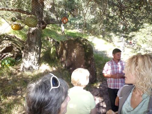 arboretum roure, no-made