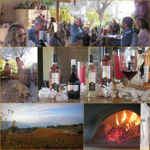 Domaine de la source, Aoc vins de Bellet, Nice,
