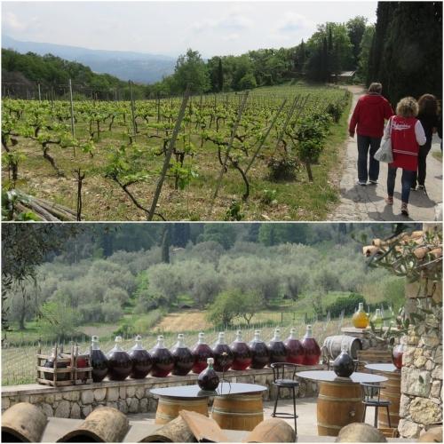 De ferme en ferme 2016, St Jeannet, Vignobles Rasse, La Clémandine, Pierre Boijout,